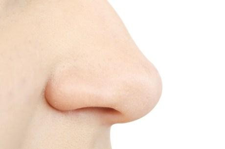 nose_4